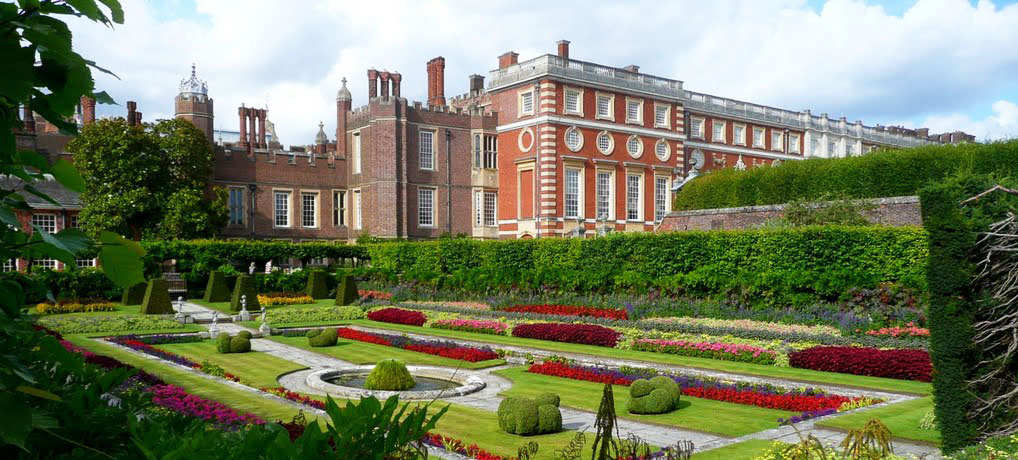 Roses In Garden: Hampton Court Gardens